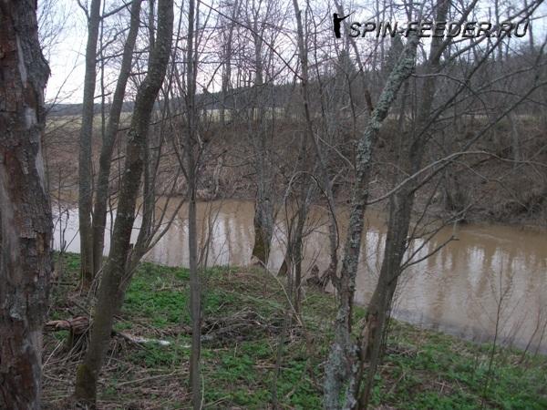 маленькая речка с быстринами